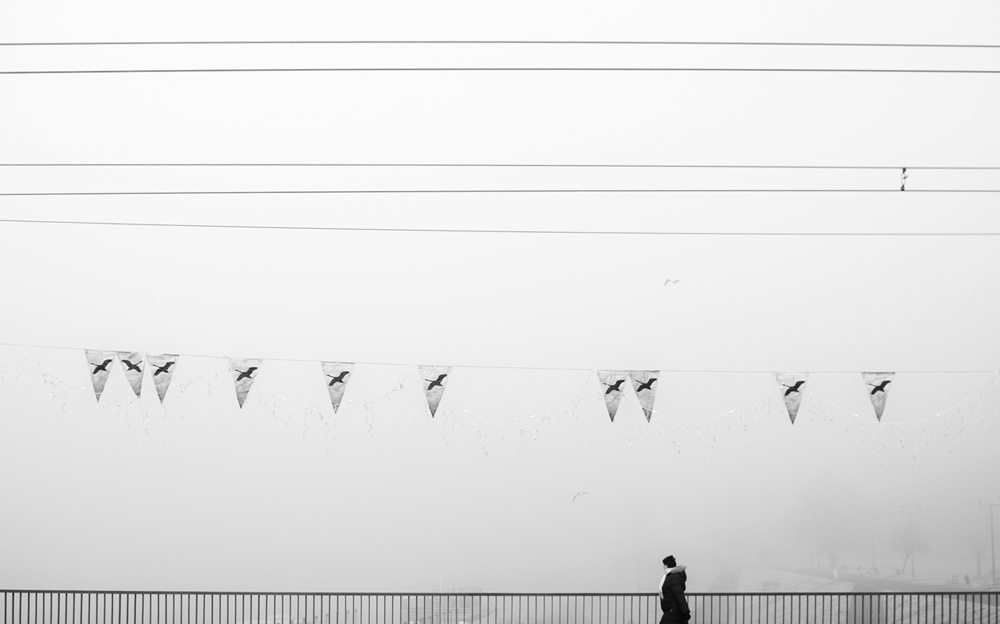 07 Life(less) birds