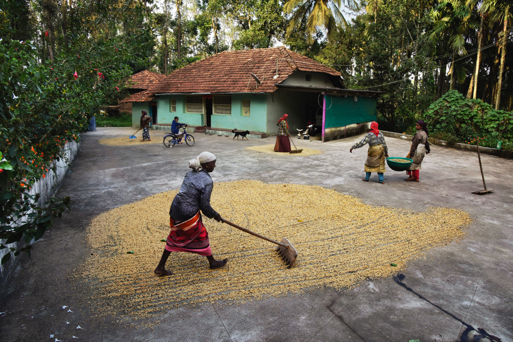India. Photo Courtesy Steve McCurry / Lavazza