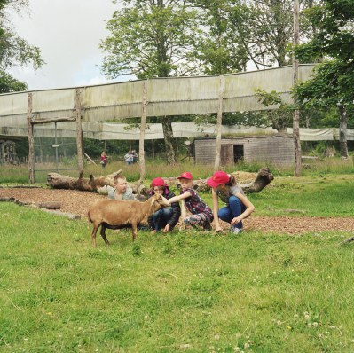 The Children stroke a small goat at the Manor House Park in West Wales, U.K. The children will spend up to a month with host families around the Pembrokeshire area of the U.K. An astonishing 85 per cent of Belarusian children are deemed to be Chernobyl victims: they carry Ògenetic markersÓ that could affect their health at any time and can be passed on to the next generation. A vicious cycle that unfortunately could continue for hundreds if not thousands of years. From the series 'The Healing Land'