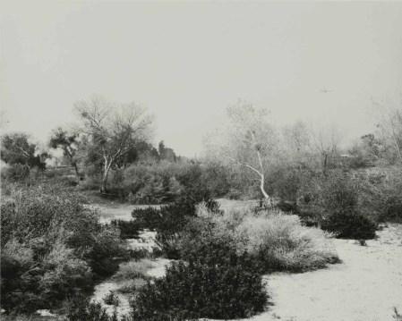 Robert Adams, Santa Ana Wash