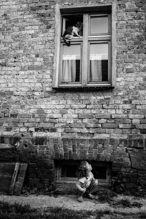 kicia_randagia_positivemagazine_09