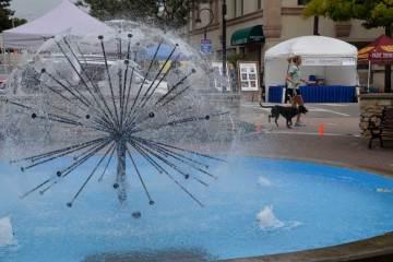 nal-riverwalk-art-dandelion
