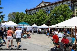2014 Petaluma Art & Garden Festival-3