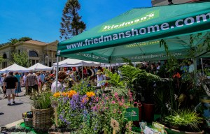 2014 Petaluma Art & Garden Festival-9