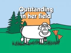 Clover Stornettas Clo Cow Billboard Outstanding in her field