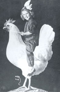 Picture Girl Riding Chicken