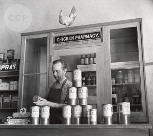 Petaluma Chicken Pharmacy