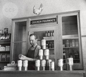 Petaluma Chicken Pharmacy
