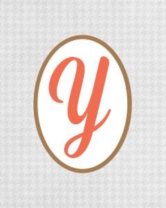 Grey Monogram Y
