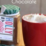 Spiced Hot Chocolate Recipe and Gift Idea #SwellNoel