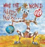 public-image-ltd-what-the-world-needs-now