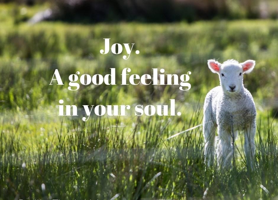 Joy – A good feeling in the soul.