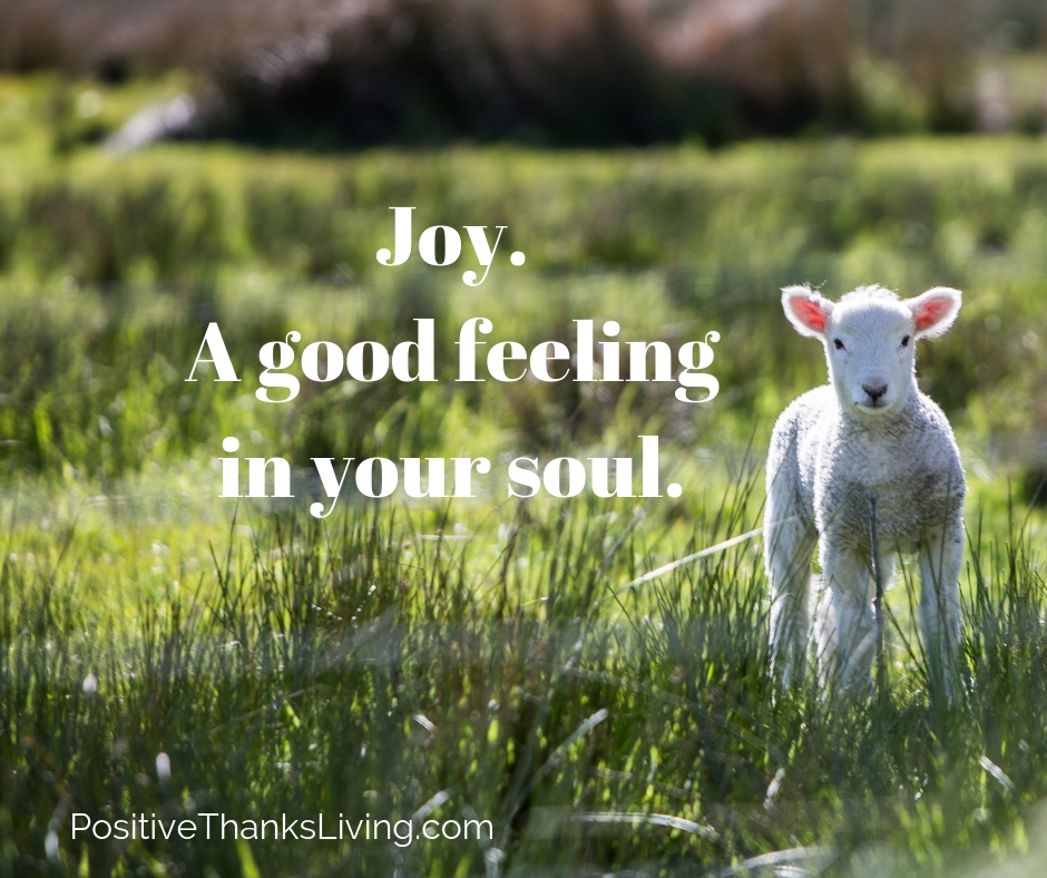 joy - a good feeling in the soul - how do you describe joy or happiness?