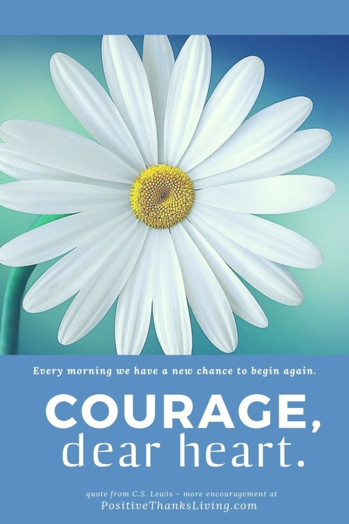 Courage, deart heart. Each morning you have another chance to begin again. You can. It's possible. Have courage and move forward. It's time.