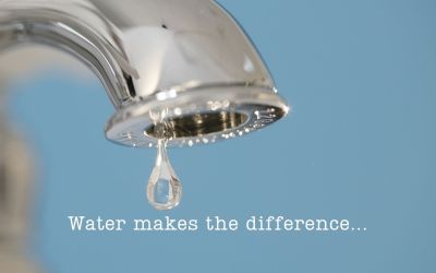 Water makes the difference.