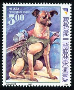 SVEMIR – JUBILEJ: Pas Lajka, Prvo živo Bice U Svemiru (1957 – 2007)