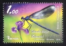 Vilinski Konjic (Odonata)