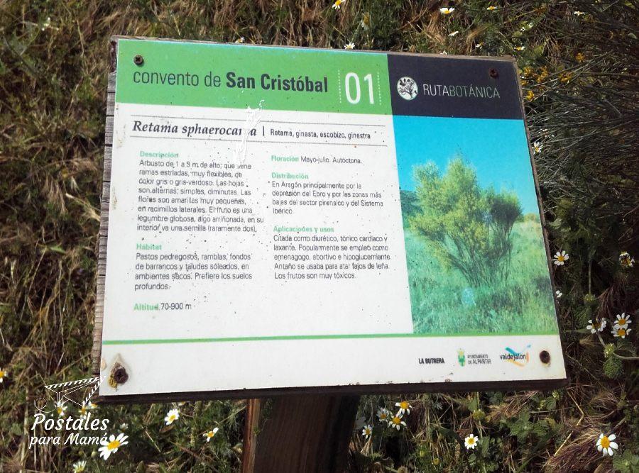 Alpartir Convento Ruta Botánica - Postales para Mamá