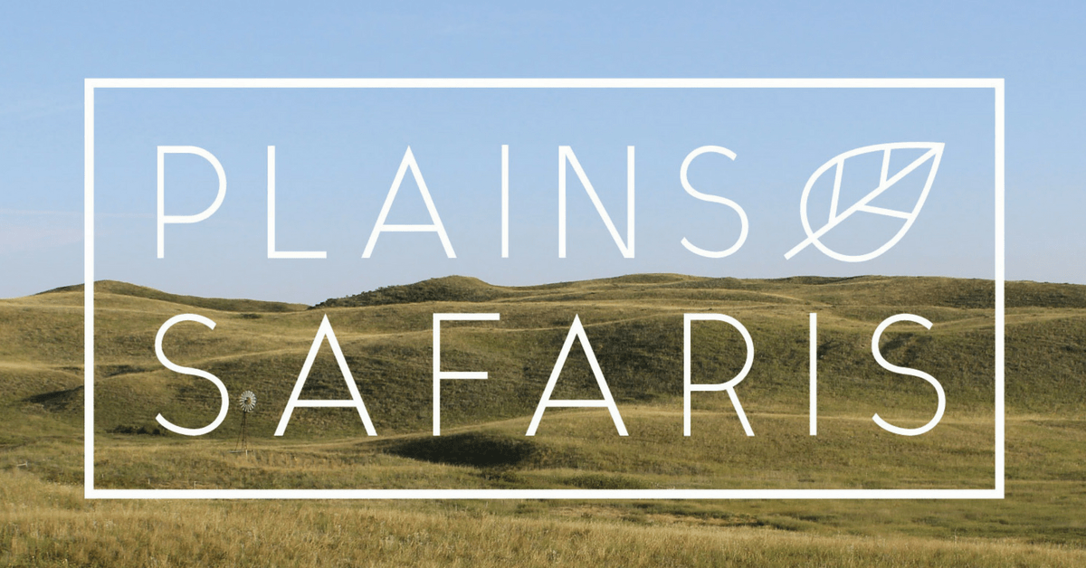Plains Safaris conference