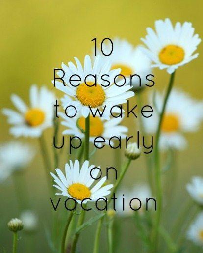 wake up daisies