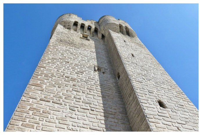 Abbey Montmajour -- an Arles Attraction