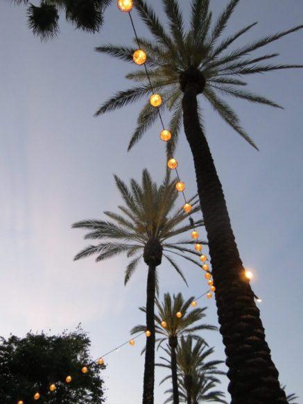 Golden Village Palms
