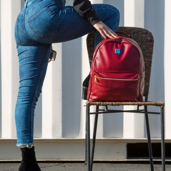 luggage backpack red