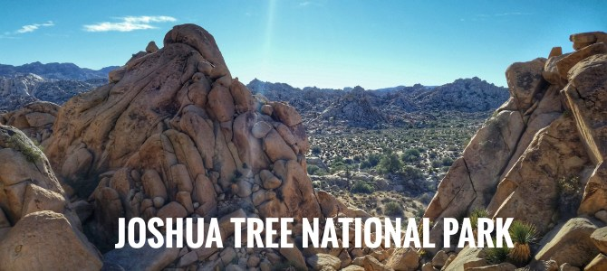 A Virtual Journey through Joshua Tree National Park