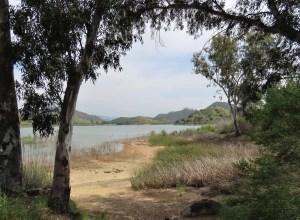 Lake Hodges beach