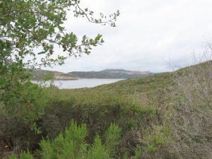 Olivenhain overlook