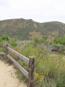 Escondido Hikes