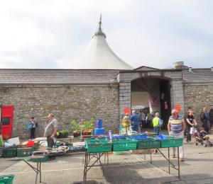 Looking around Limerick Milk Market
