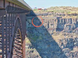 BASE jumping from bridge
