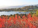 Escape to Bonelli Bluffs RV Resort & Campground!