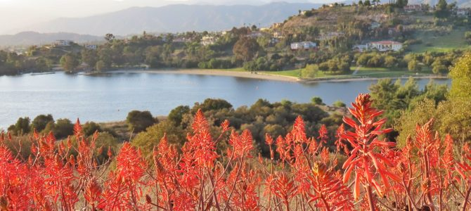 Escape to Bonelli Bluffs RV Resort & Campground!