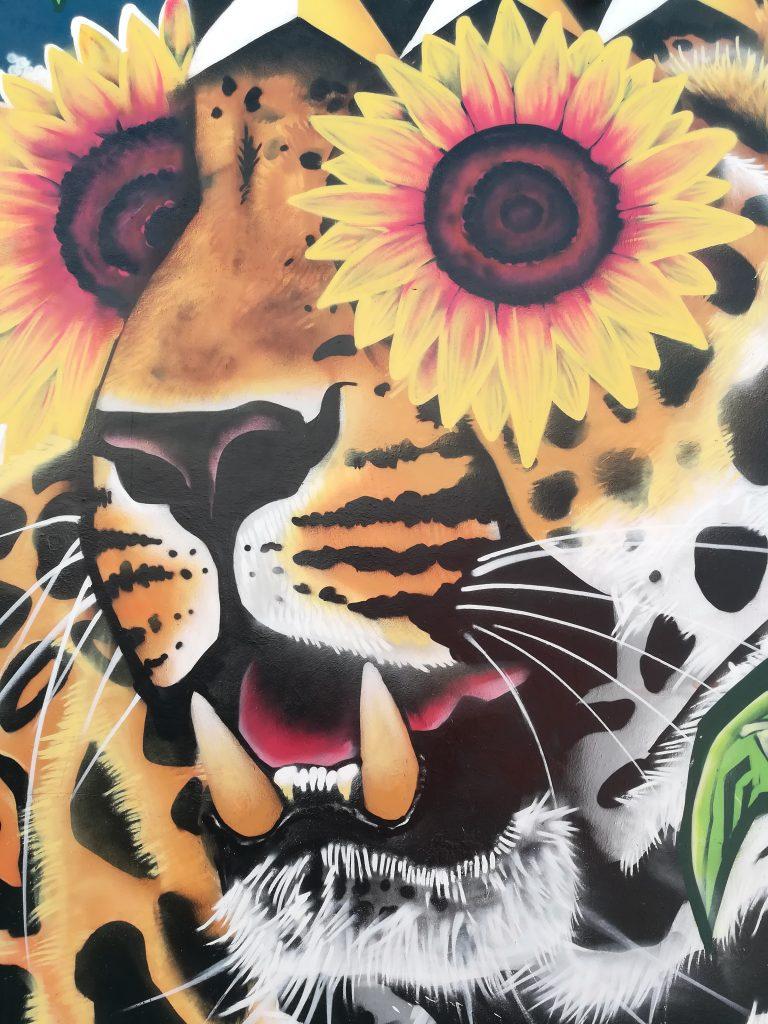 Visitando los murales de Wynwood en Miami
