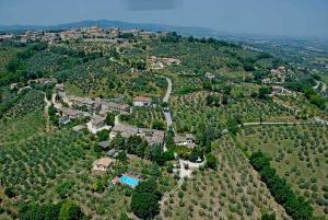 Umbria Camiano aerial shot