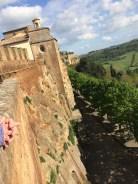 Umbria Orvieto