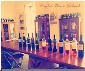 Welcome to the Puglia Wine School!