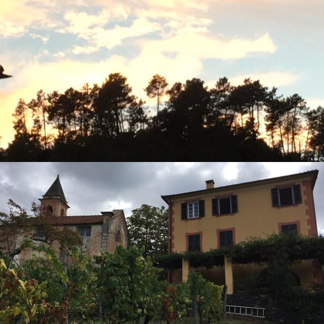 Liguria - Levanto