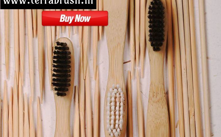 Buy Best Bamboo Toothbrush in India – Terrabrush.in | free Classified | Free Advertising | free classified ads