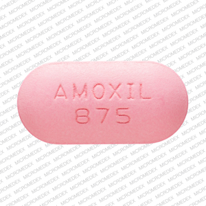 Buy Amoxil Online – Best Amoxil 250mg Online | Sunbedbooster | free Classified | Free Advertising | free classified ads