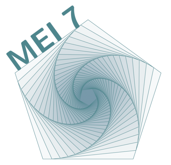 Conference on Research in Mathematics Education in Ireland (MEI)