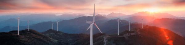 Niamh Burke Bursary in Renewable Energy