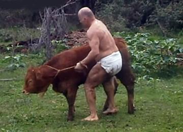 Κακοποίηση ανυπεράσπιστου ζώου από παλαιστή