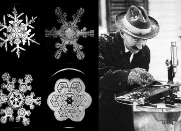 Ο κτηνοτρόφος που ανακάλυψε τη διαφορετικότητα της χιονονιφάδας