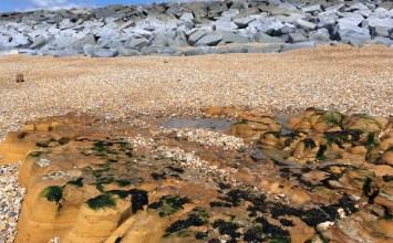 Εγκλήματα κατά του Περιβάλλοντος – Περιβαλλοντική Εγκληματολογία & Media