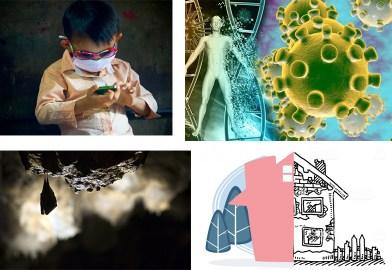 postmodern gr: συνεισφορά στην ενημέρωση για την πανδημία χωρίς ανταλλάγματα