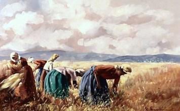 Από την αγροτική ζωή της Ηπείρου: θέρος – τρύγος – πόλεμος