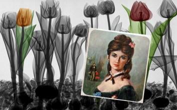 'Το πορτρέτο μιας κυρίας' ('Το βάζο', ν.3)